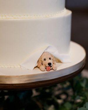 vestuvinis tortas su naminių augintinikų atributika